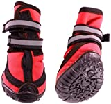 Fashion Pet Performance Waterproof Dog Boots, X-Small, Red by Fashion Pet